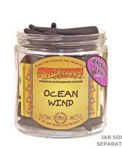 Ocean Wind Backflow Incense Cones